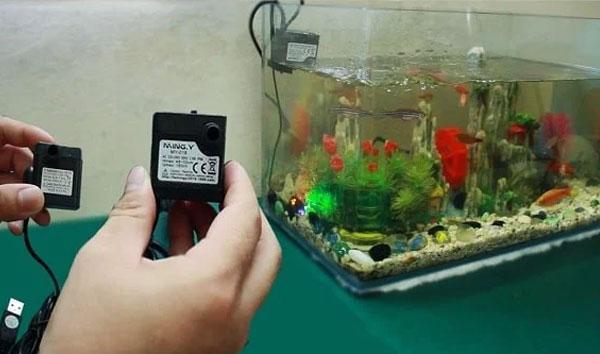hướng dẫn chọn máy bơm bể cá đúng cách